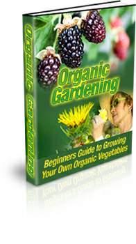 Thumbnail Organic Vegetable Gardening Cover
